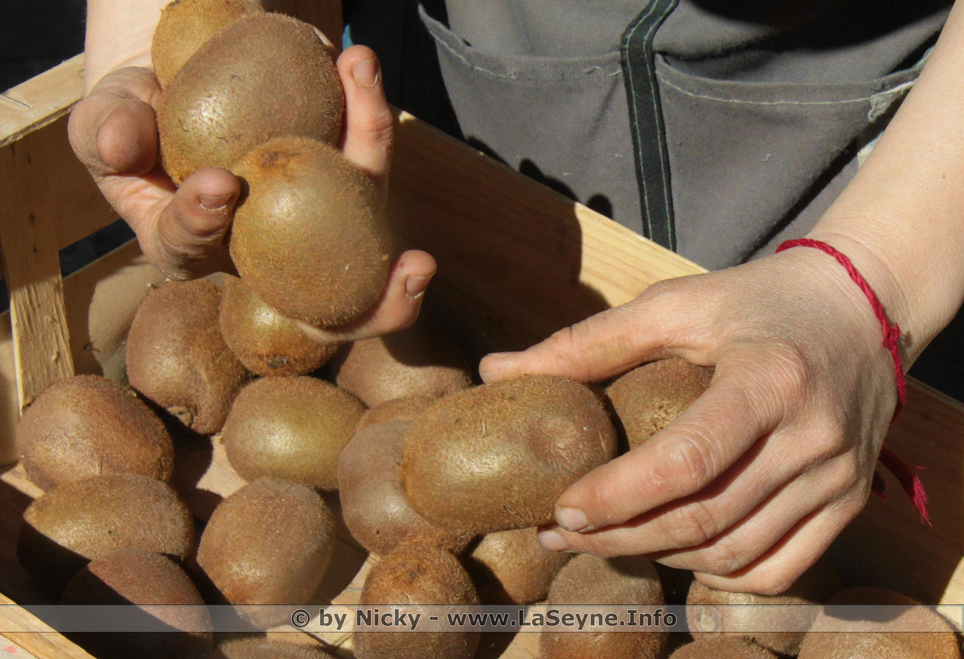 Kiwi du Marché