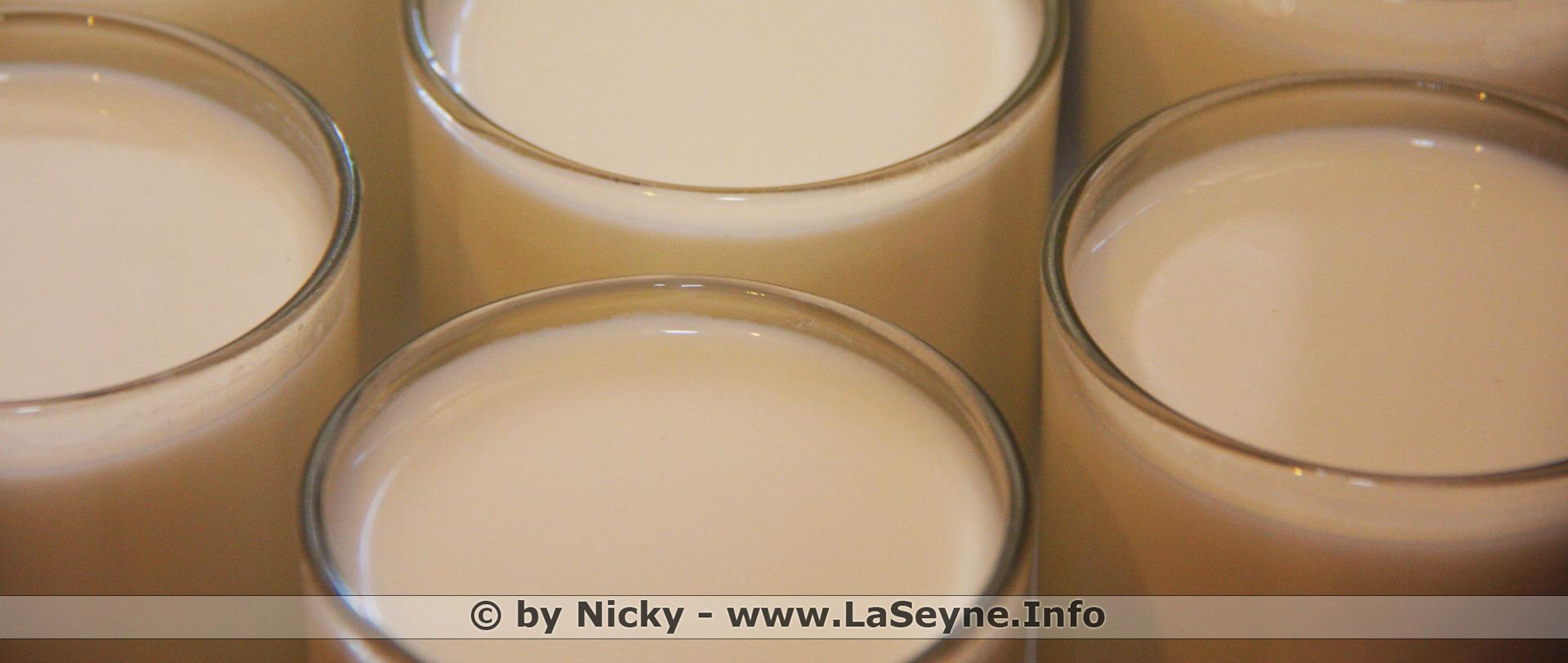laseyne info yaourts aux fruits fait maison compar s aux yaourts aux fruits en plastique. Black Bedroom Furniture Sets. Home Design Ideas
